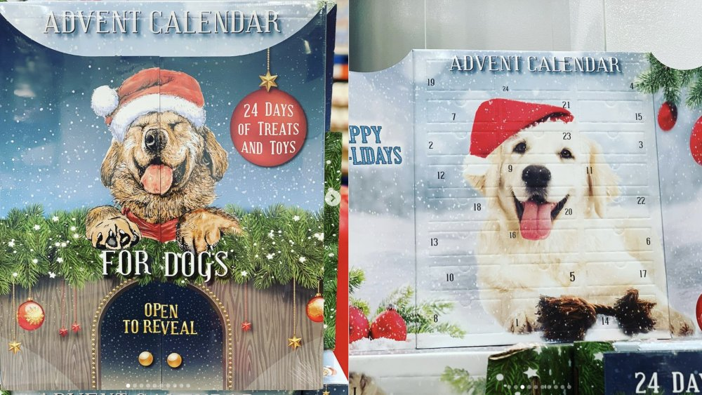 Costco S Newest Advent Calendar Has Humans Jealous