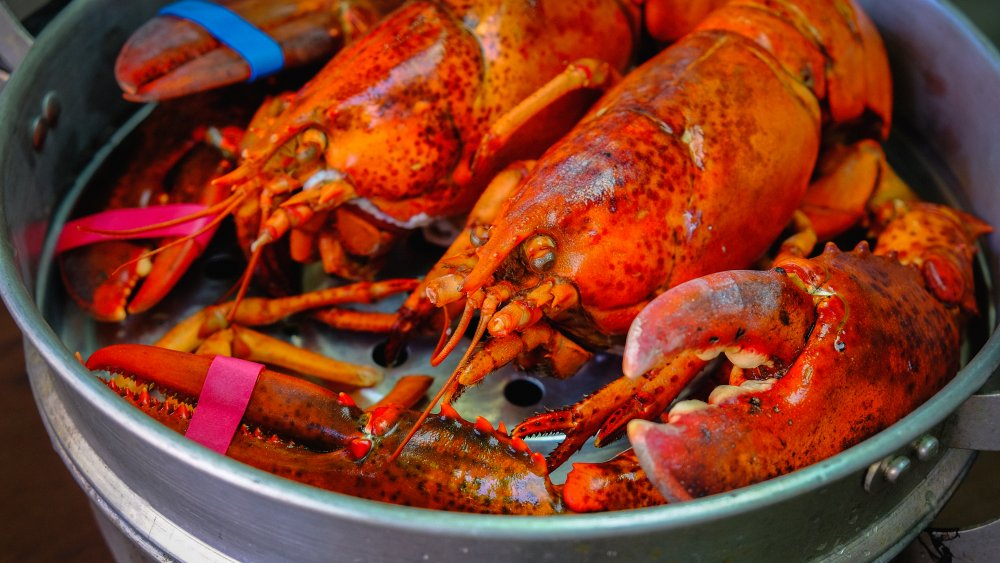 Seafood You Should Never Put Into Your Body