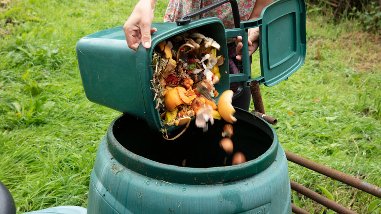 Food into compost bin