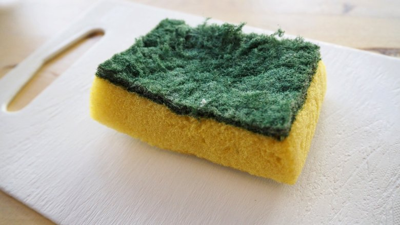 You Re Using Your Kitchen Sponge Totally Wrong
